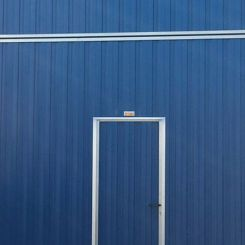 puerta-pleleva-actual-madrid